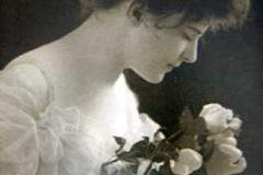 #8 Fair as a Rose